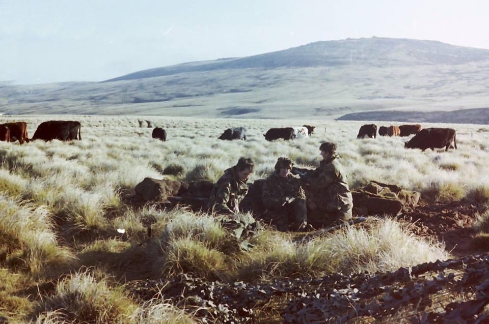 29 commando & 4th Field Regiment falklands war.jpg