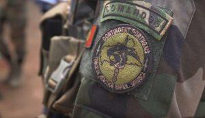 Comandos2-300x172.jpg