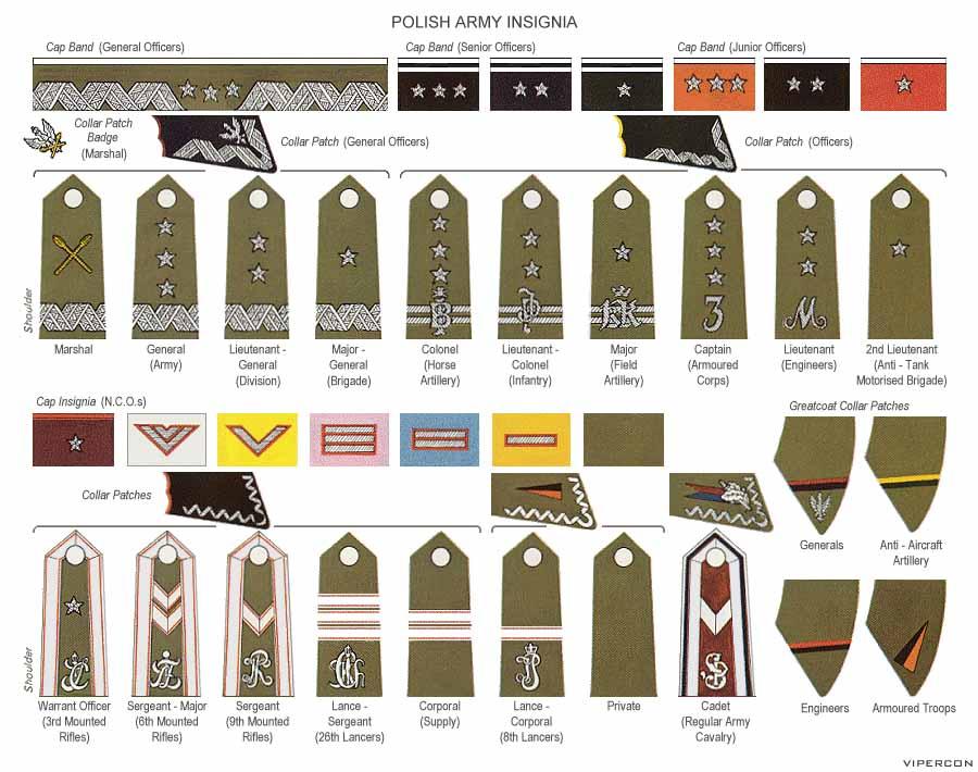 Polish army rank insignia