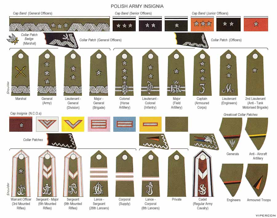 Polish Army Ranks WW2   MilitaryImages Net